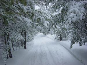 winter-landscape-13120702373p2