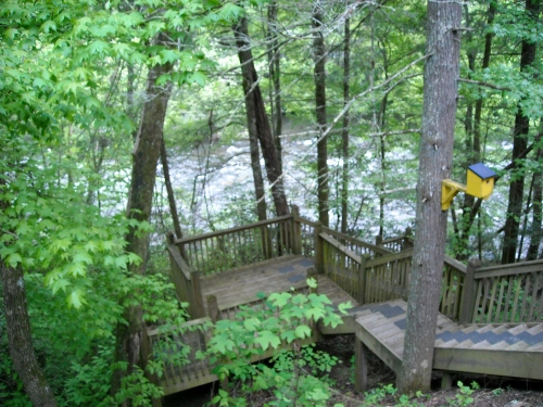 Our steps down to the the Little Pigeon River