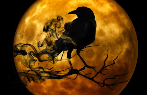 crow-standing-on-branch-in-front-of-full-moon-scary-halloween-scene